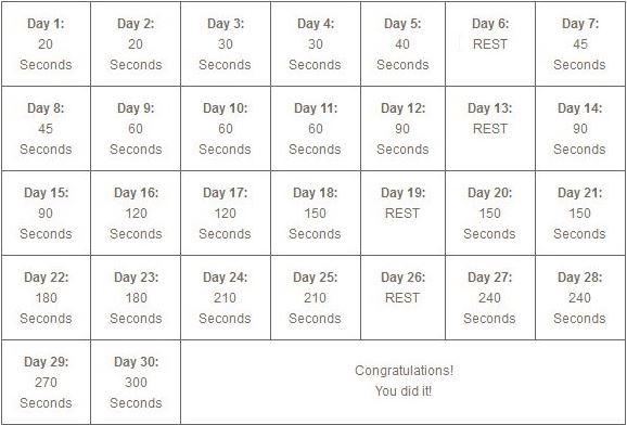 30-day-plank-challenge1