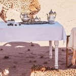 ANGELINA JOLIE WRITES A LETTER TO YOU FROM NAMIBIA